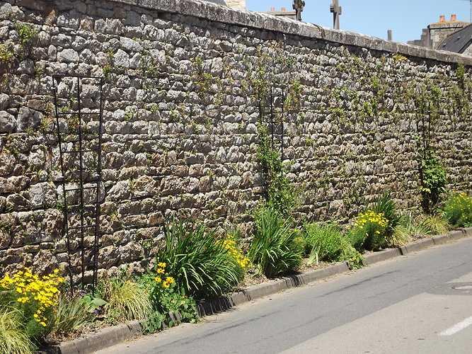Jardinières- commune de Plouisy dscf4179